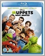 10224089 - Muppets Most Wanted
