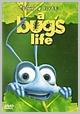 34631 DVDD - Bug's Life